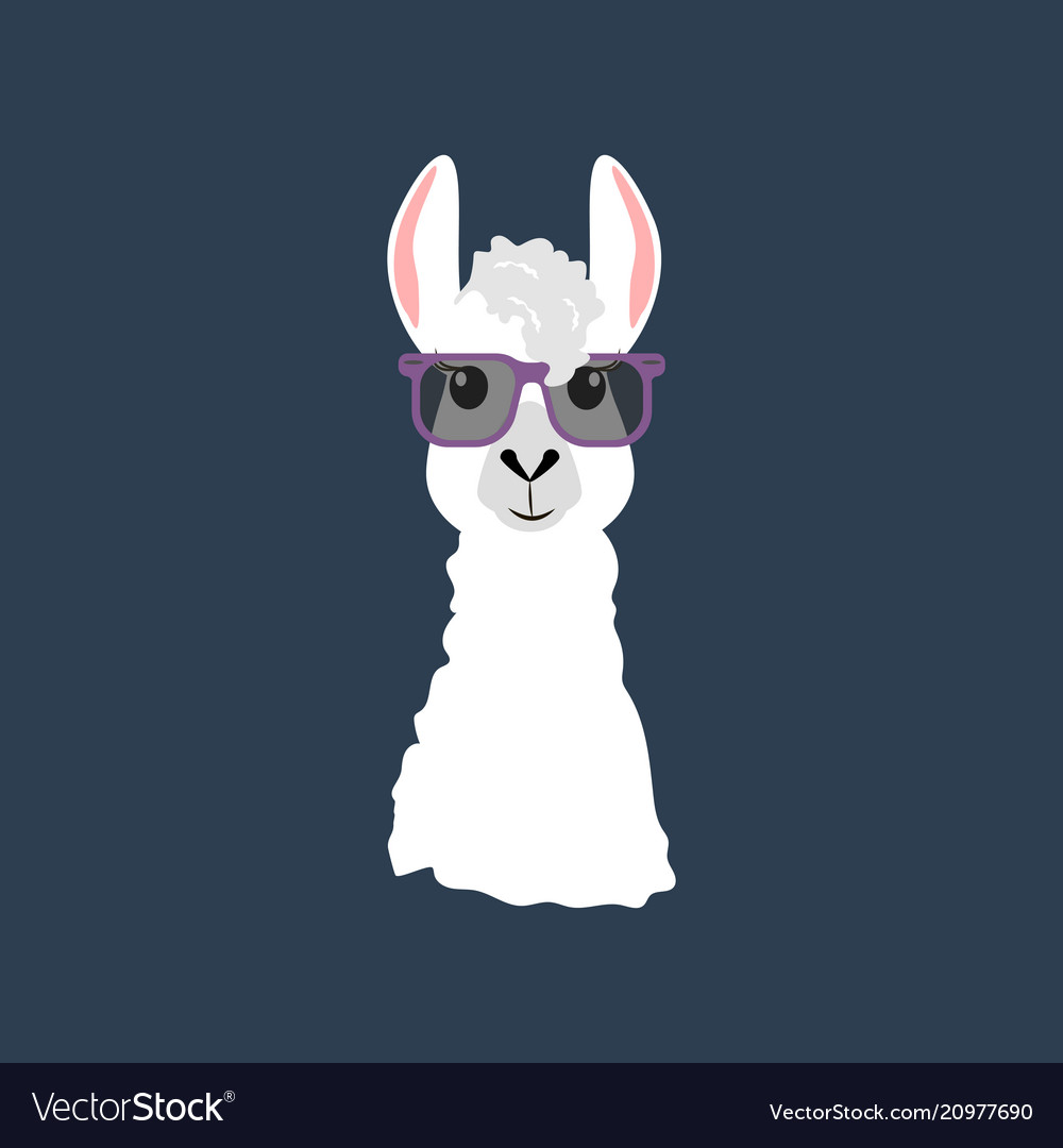 fdc9a33f1f Llama in glasses Royalty Free Vector Image - VectorStock