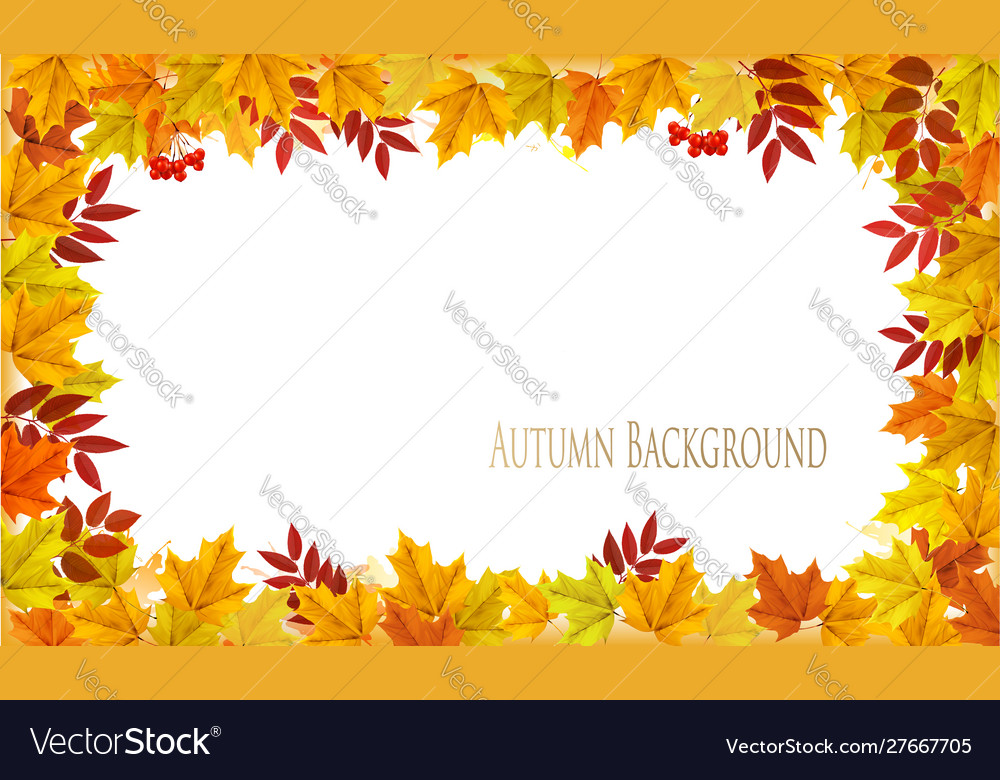 Fall nature autumn colorful leaves background