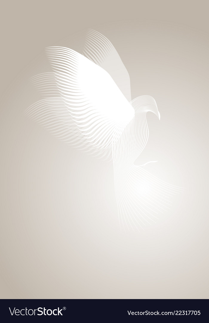 Magic dove made with lines on misty background