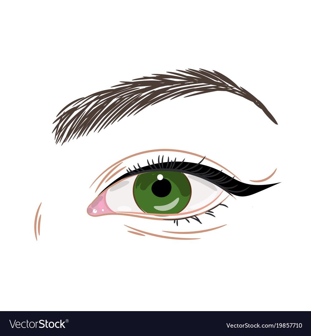 Green female eye with eyeliner