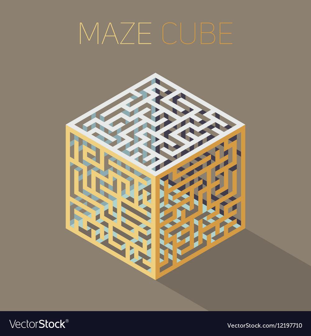 Isometric Maze Cube Cage Design Concept vector image