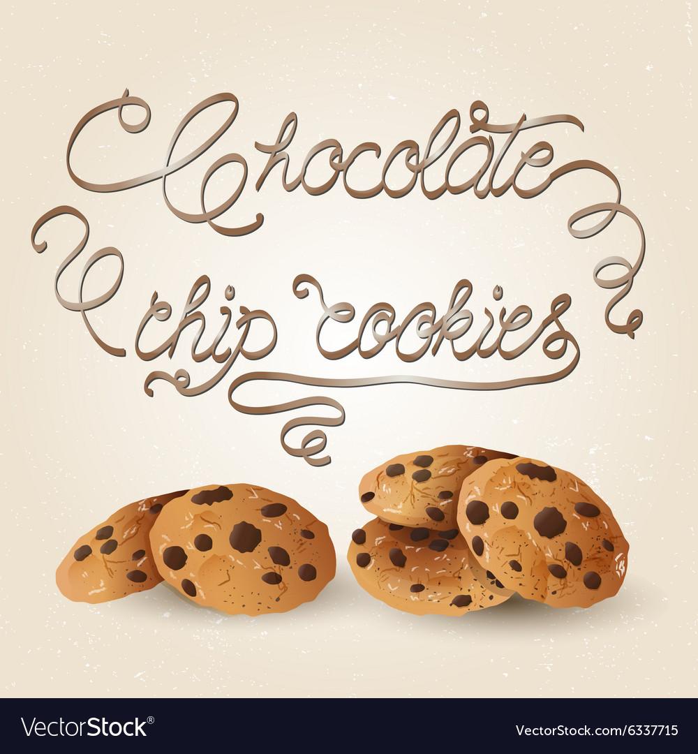 Cookies brown vector image