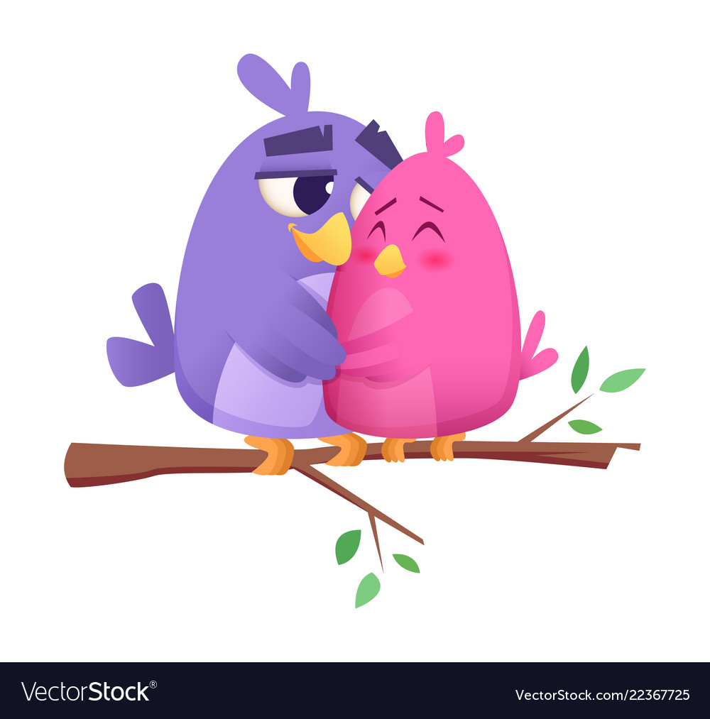 Love bird couples male and female animals cute