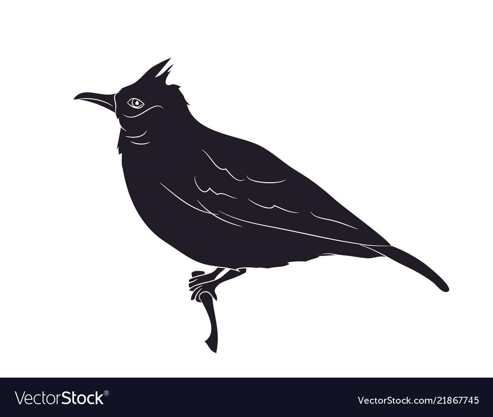 Bird sitting on a branch silhouette