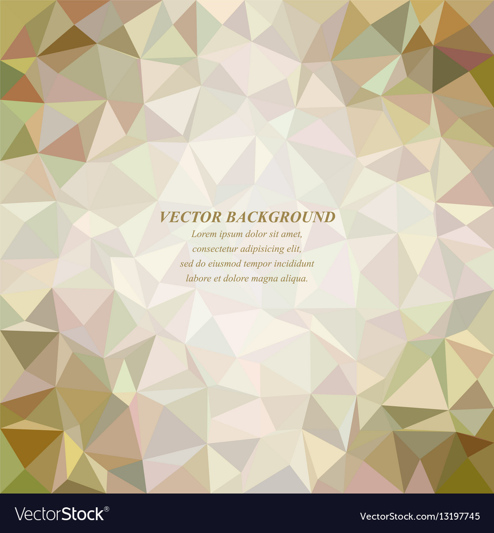Color tiled triangle mosaic background design vector image