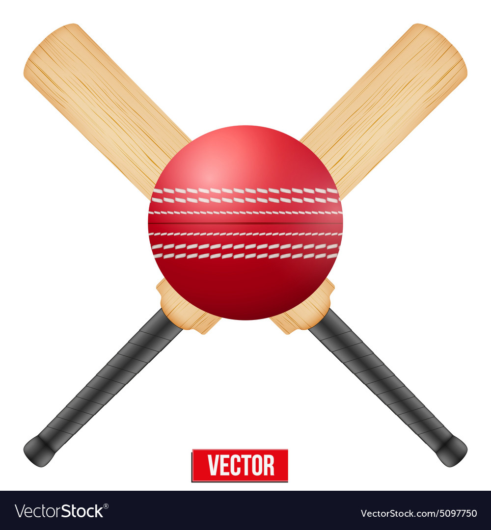 Cricket leather ball and