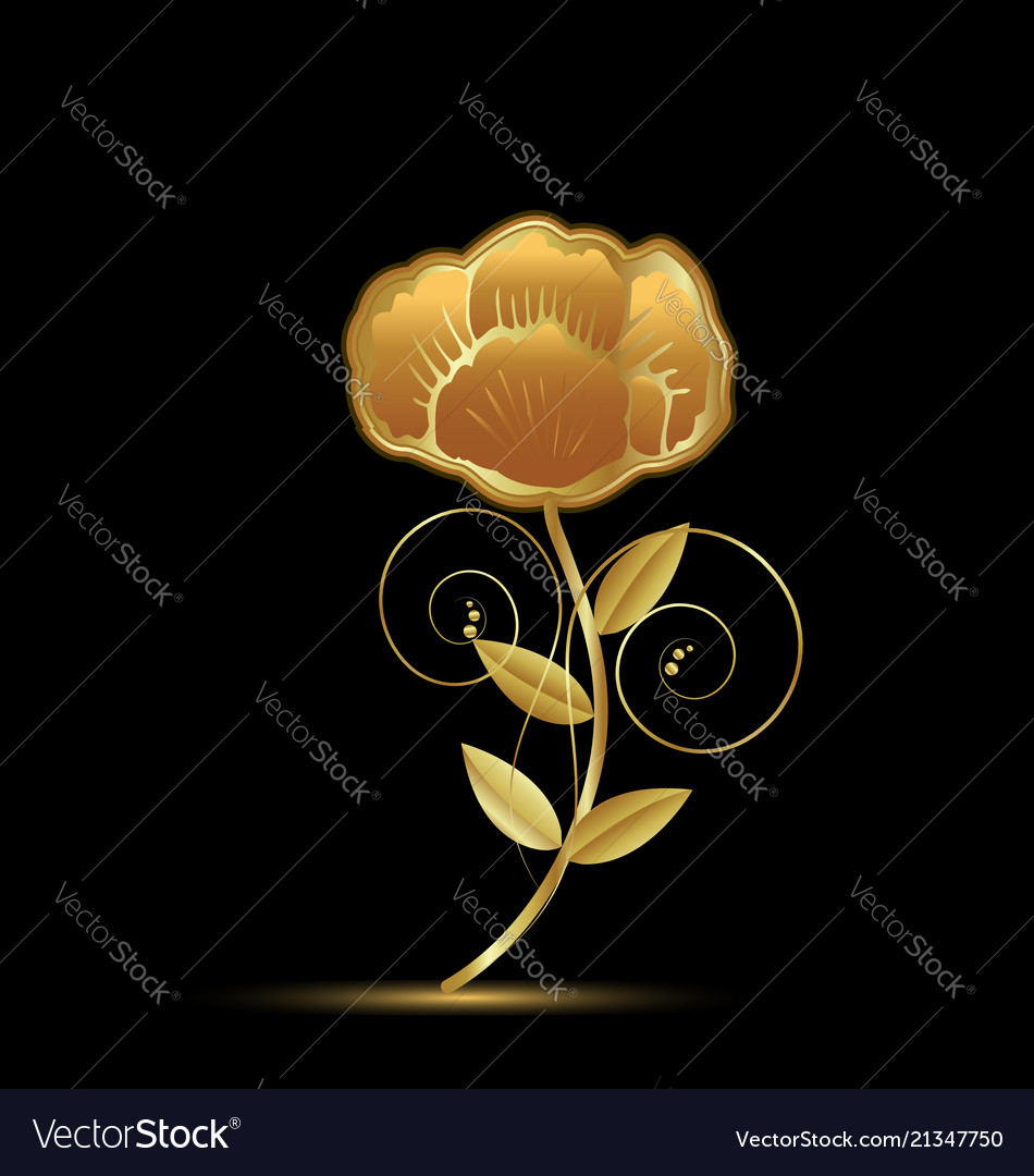 Gold flower rose on black background