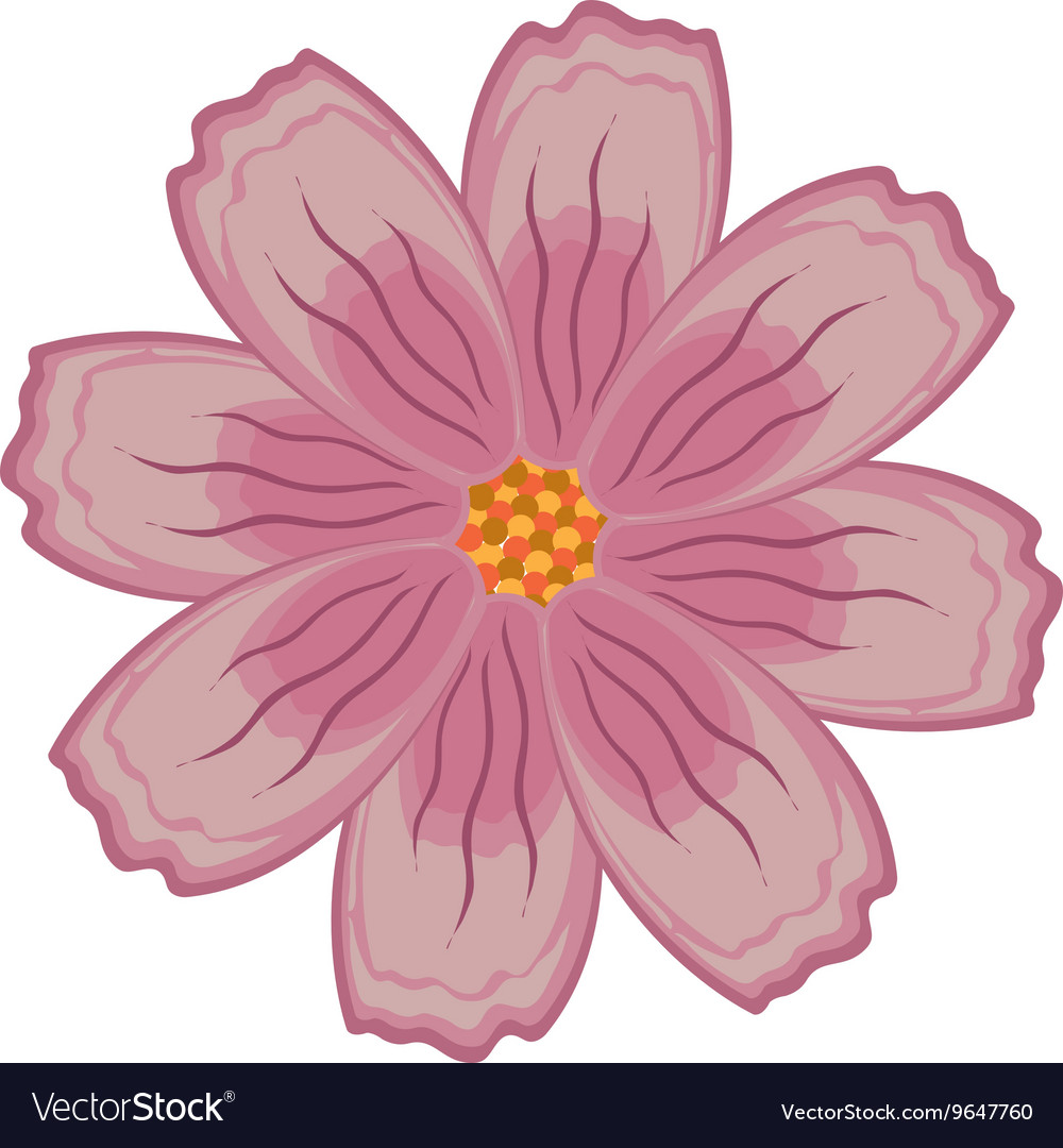 Colorful pink and purple flower graphic
