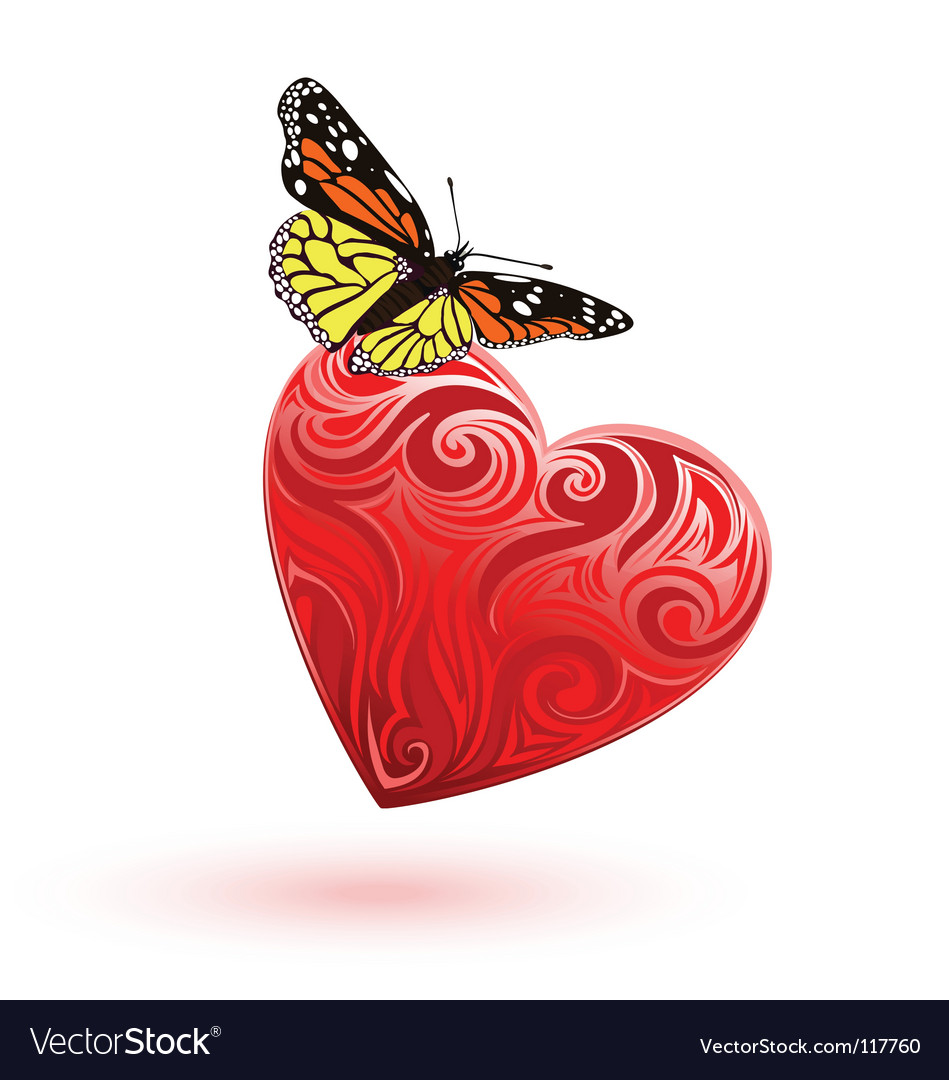 Heart and butterfly vector image