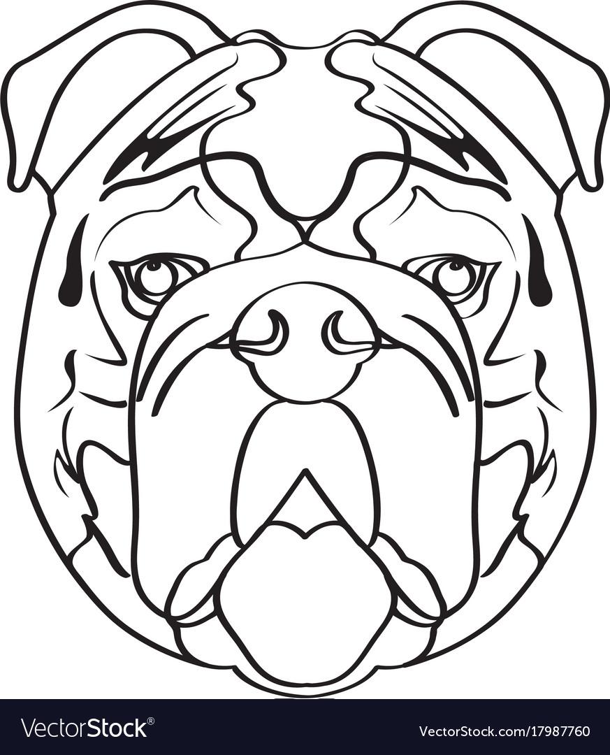 Isolated bulldog avatar vector image