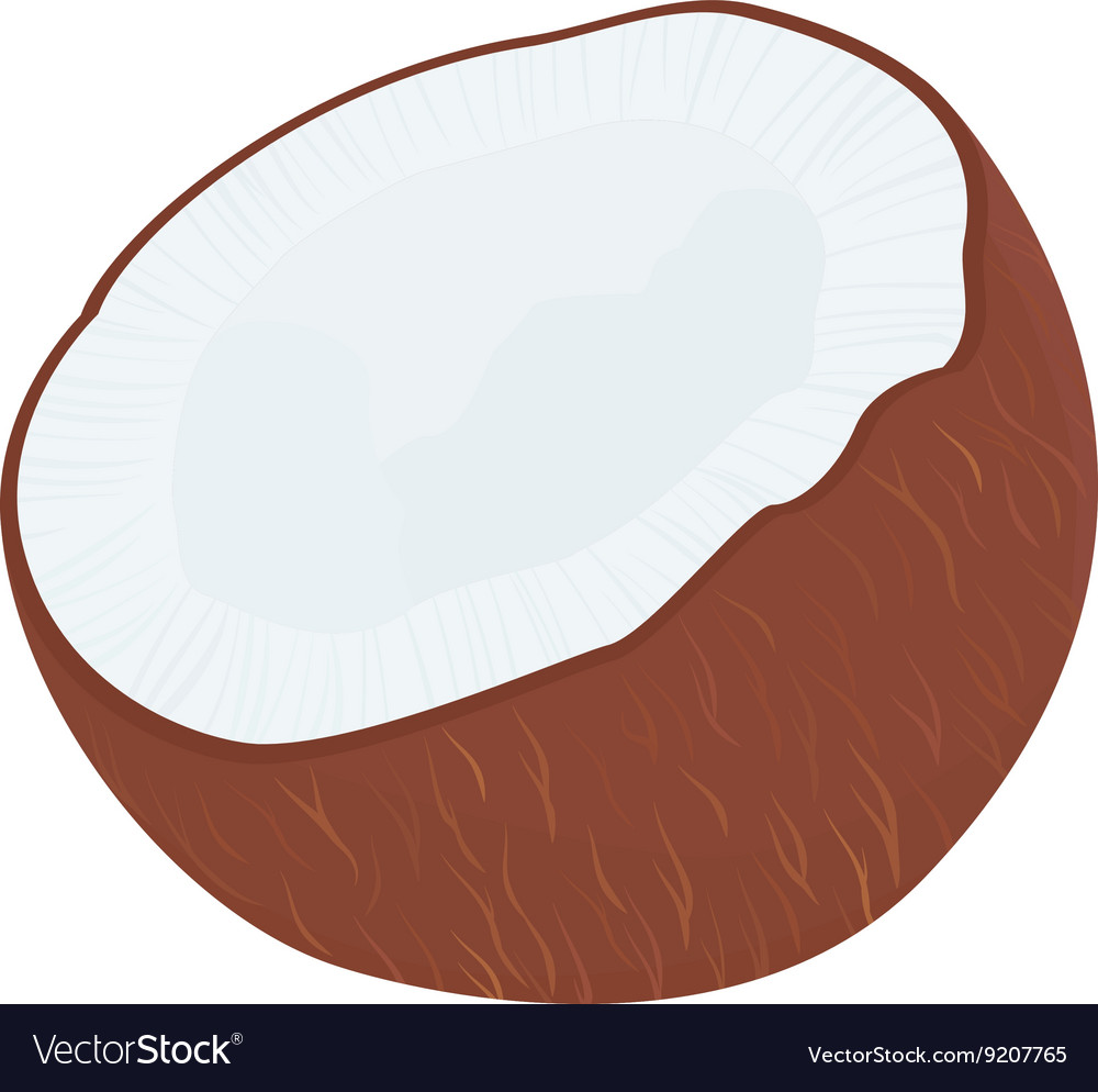 Half of tropical fruit coconut isolated on