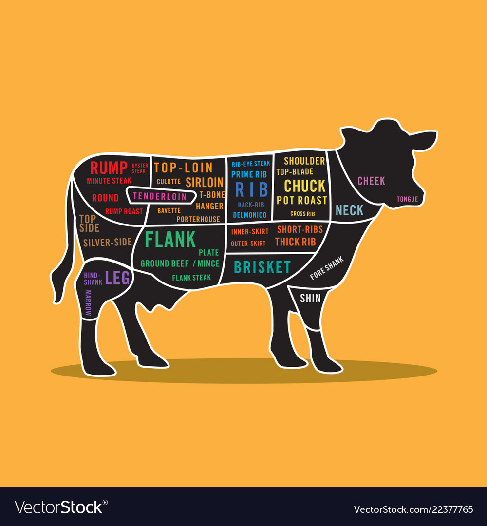 Beef Cuts Map Map of beef steak cuts cow infographic Royalty Free Vector