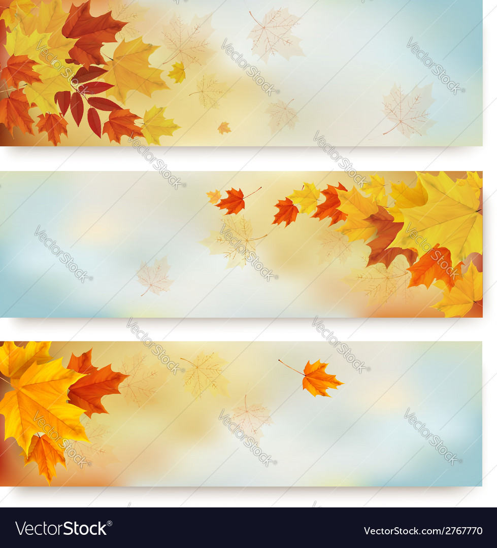 Three abstract autumn banners with color leaves