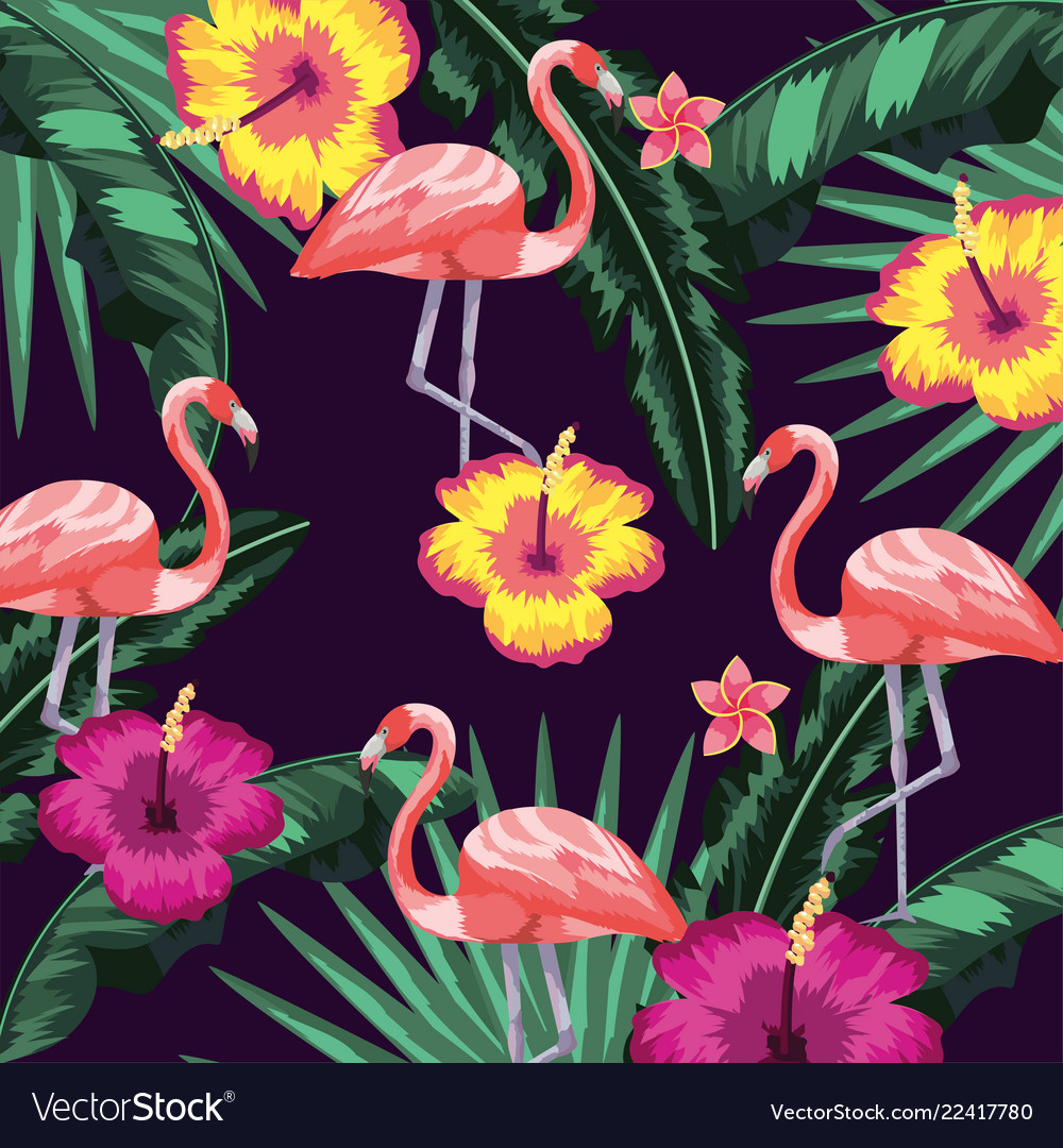 Flowers with flamingos and leaves plants
