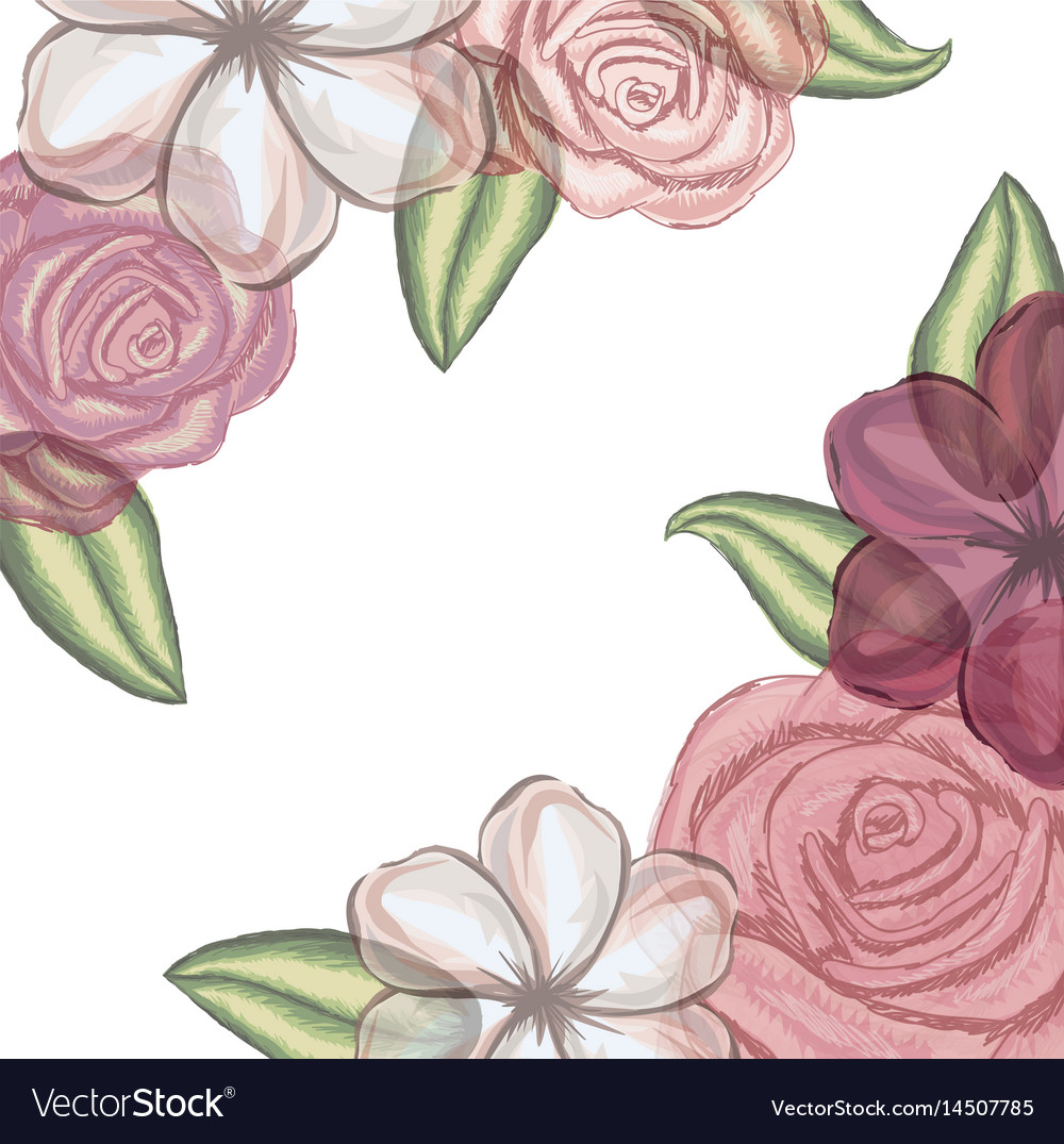Colorful floral background with flowers in vector image