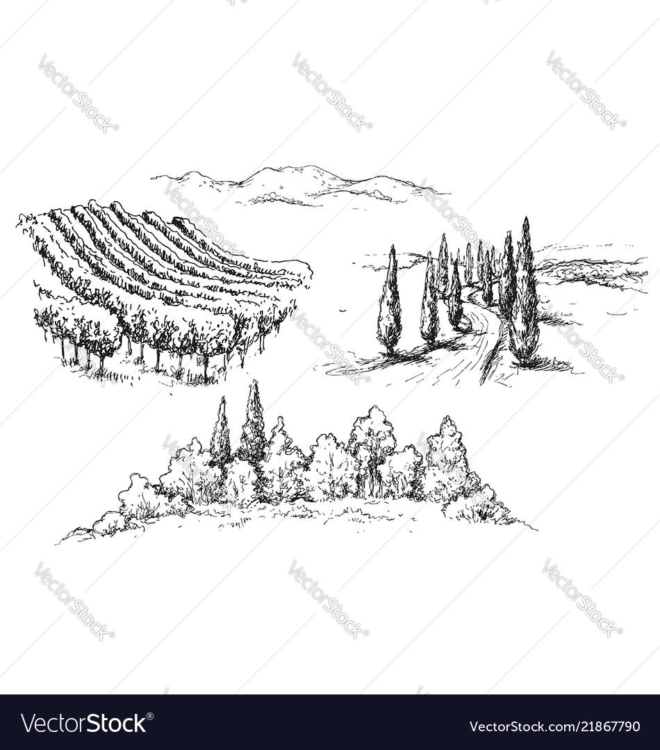 Rural scene fragments sketch