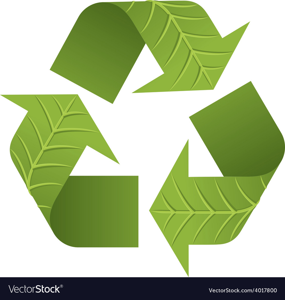 Leaf Recycle Logo Vector Image