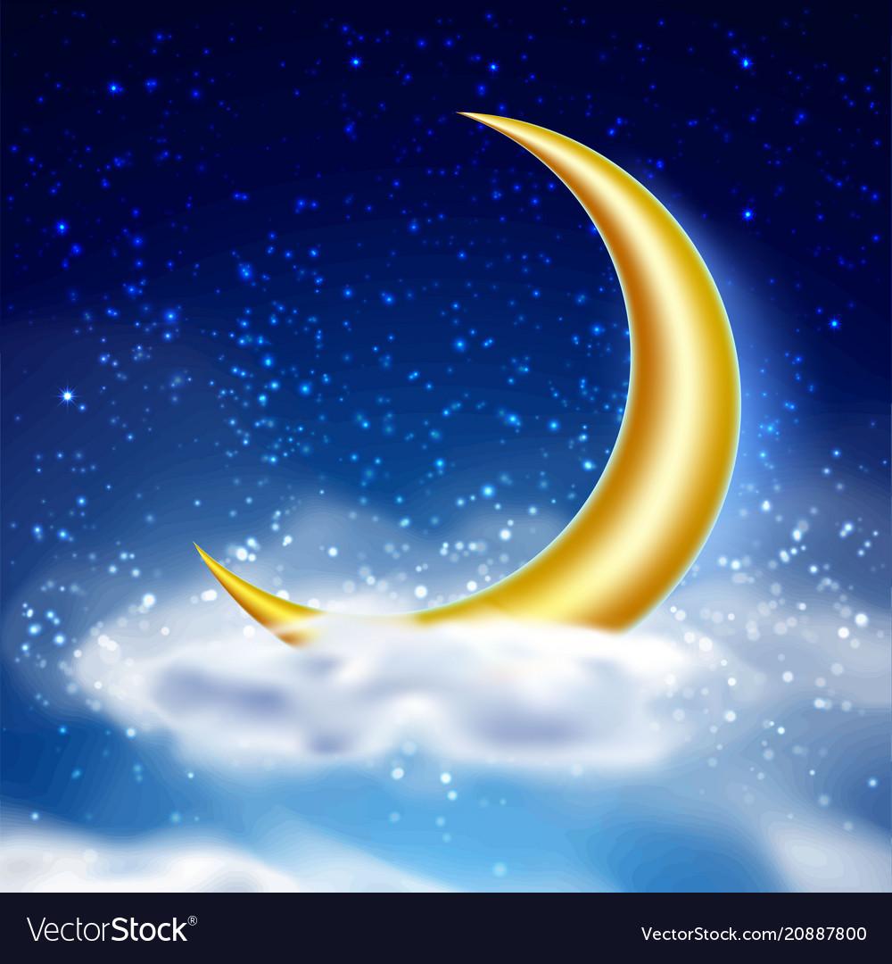 Magic night sky with cloud vector image