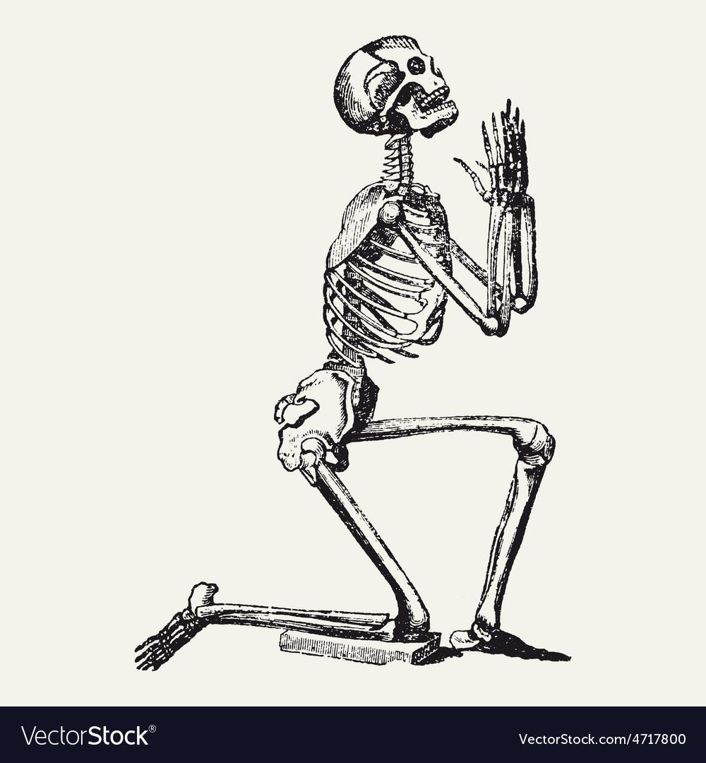1524b8cc2 Praying & Skeleton Vector Images (25)