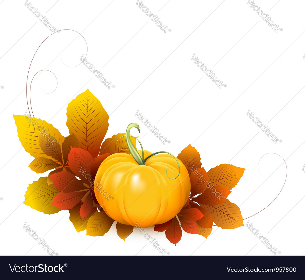 Pumpkin and autumn leaves vector image