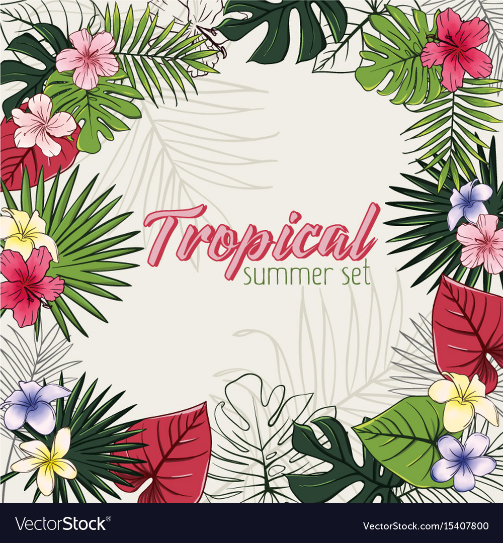 Set of of tropical flowers and vector image