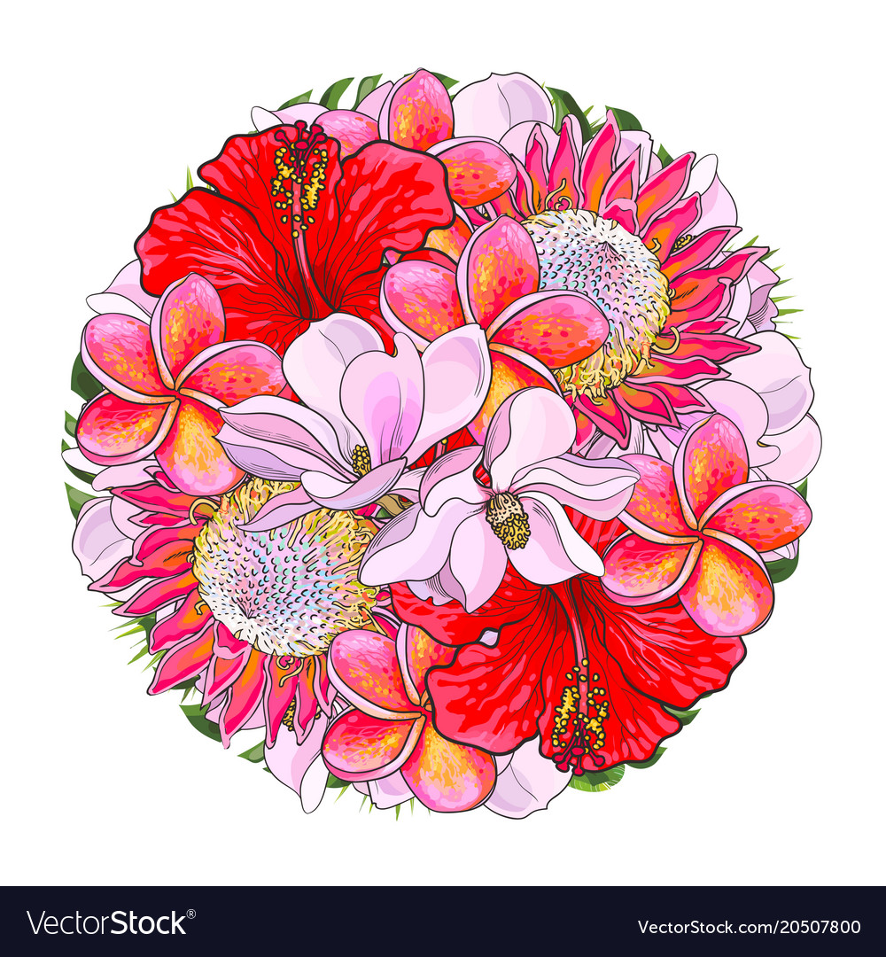 Tropical flowers in bouquet of sphere shape Vector Image