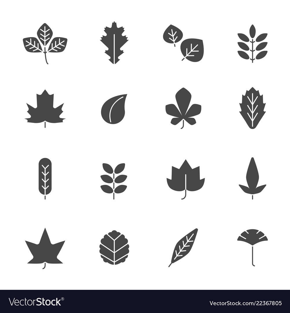 Autumn leaves icons silhouettes of various autumn