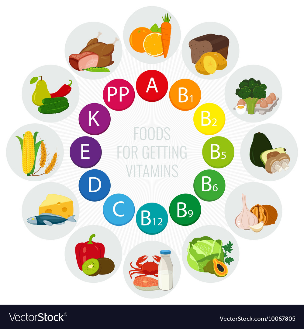 Vitamin Food Sources Colorful Wheel Chart With Vector Image