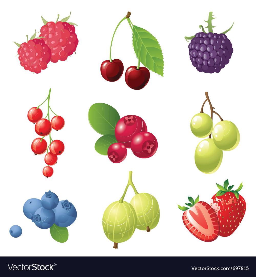 9 sweet berries icons set