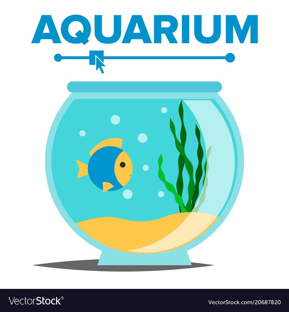 Aquarium Cartoon Fish Home Glass Tank Royalty Free Vector
