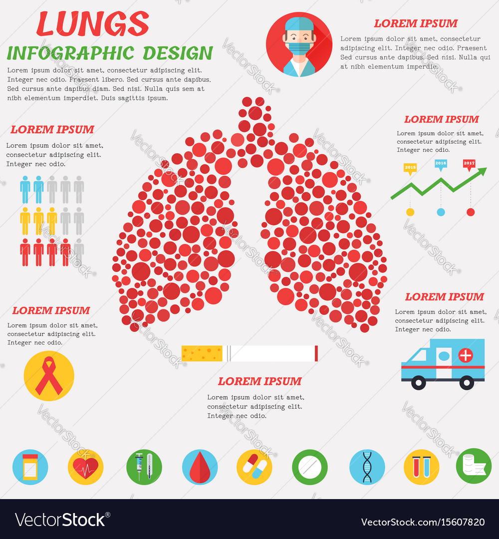 Lungs infographic design with set of flat icons vector image