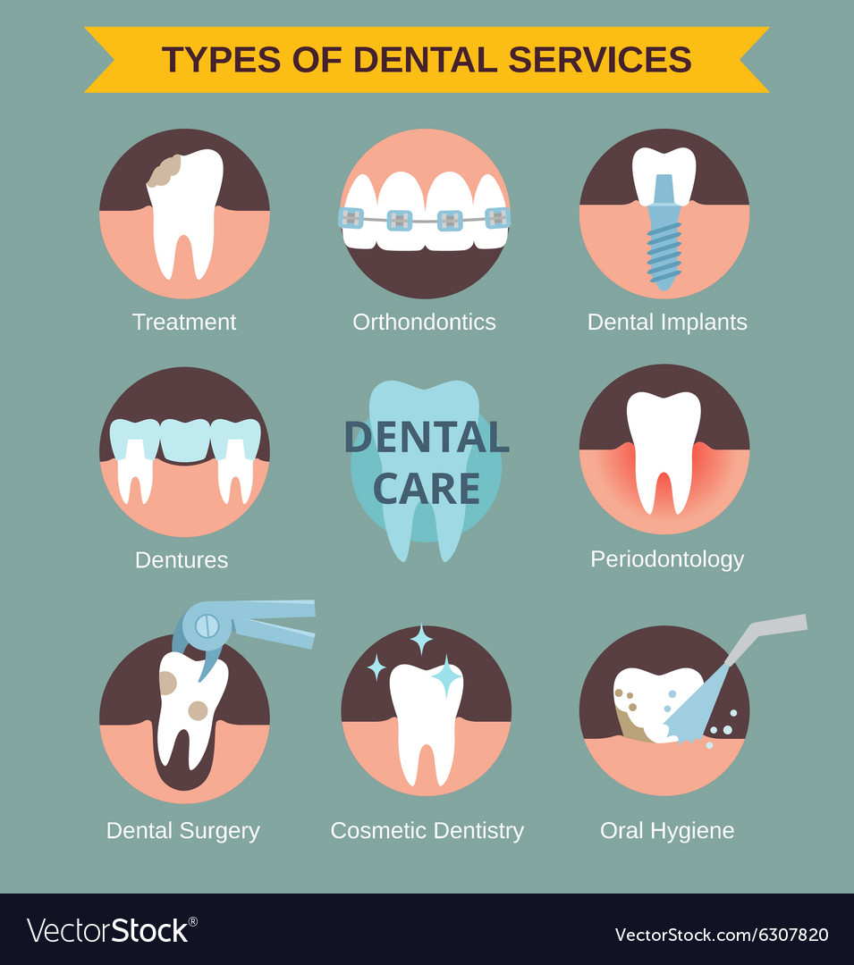 Types Of Dental Servises Royalty Free Vector Image