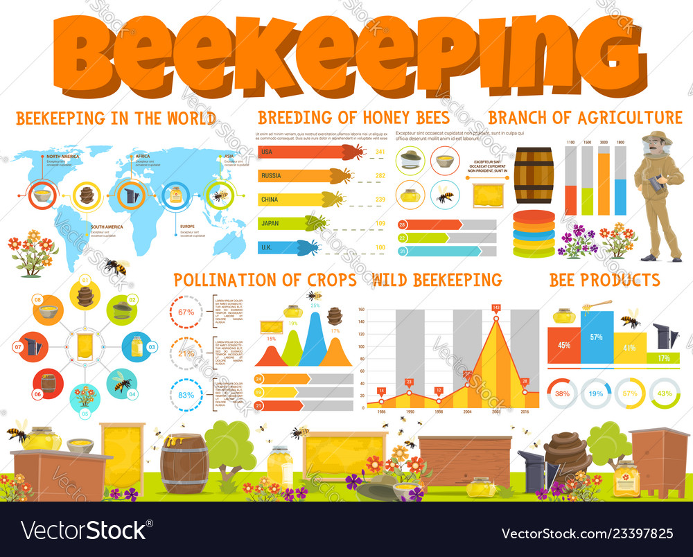 Beekeeping and honey bee products infographics