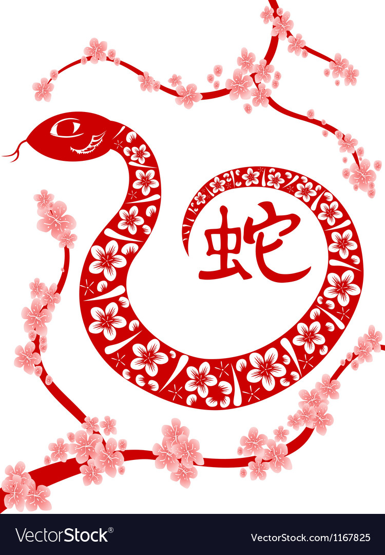 Chinese Snake year vector image