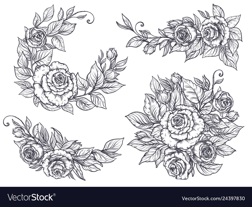 Collection of four elegant hand drawn graphic