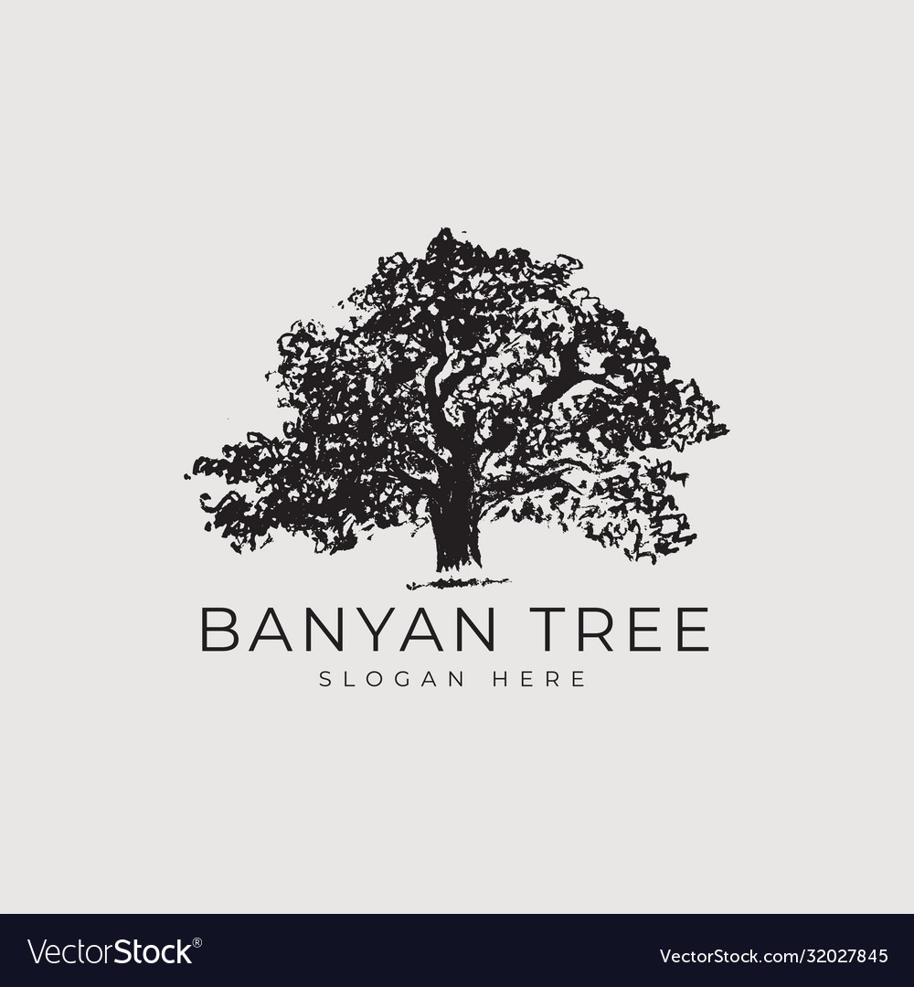 Banyan Tree Logo Concept Royalty Free Vector Image