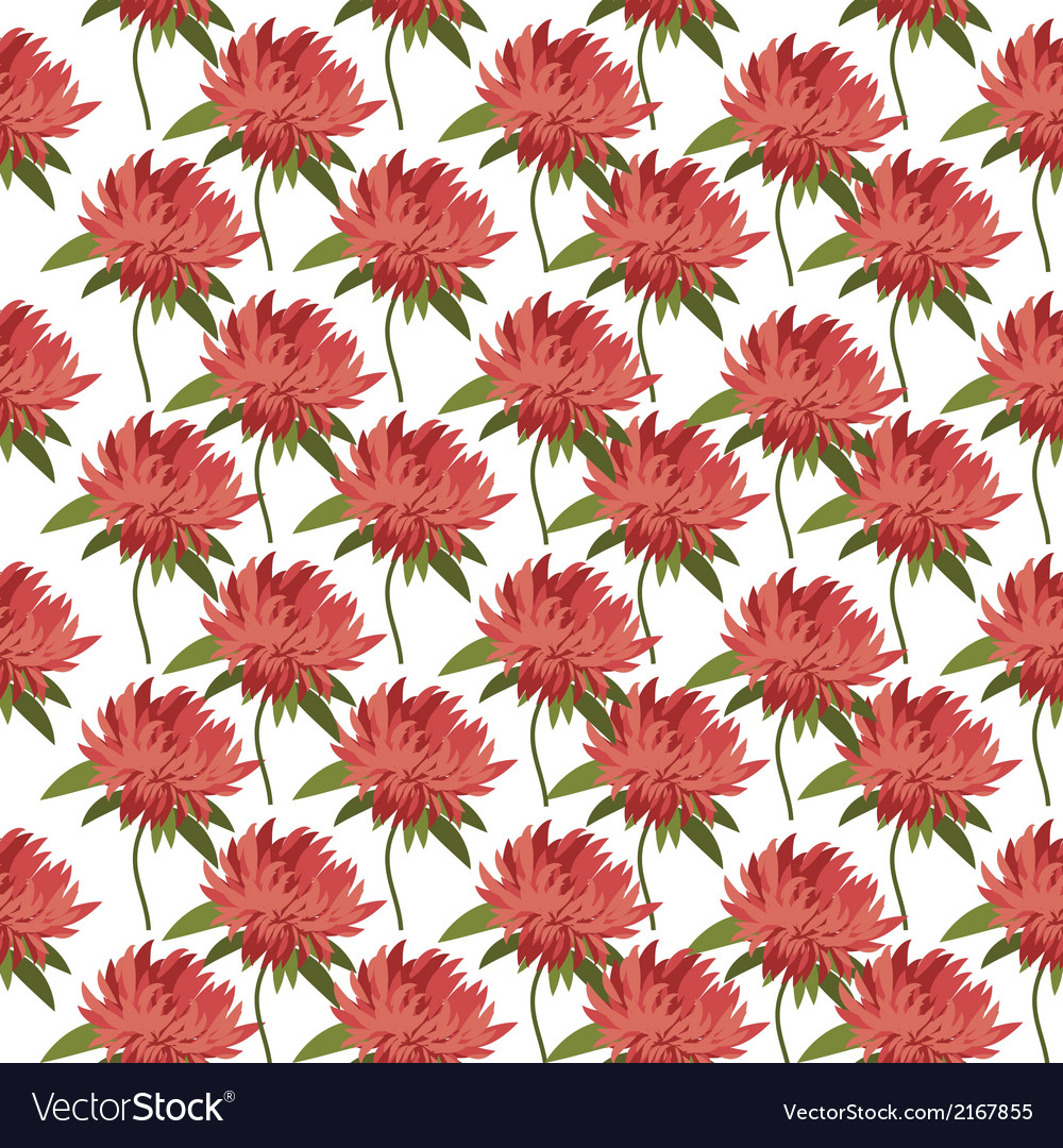 Postcard with flower Astra for your design vector image