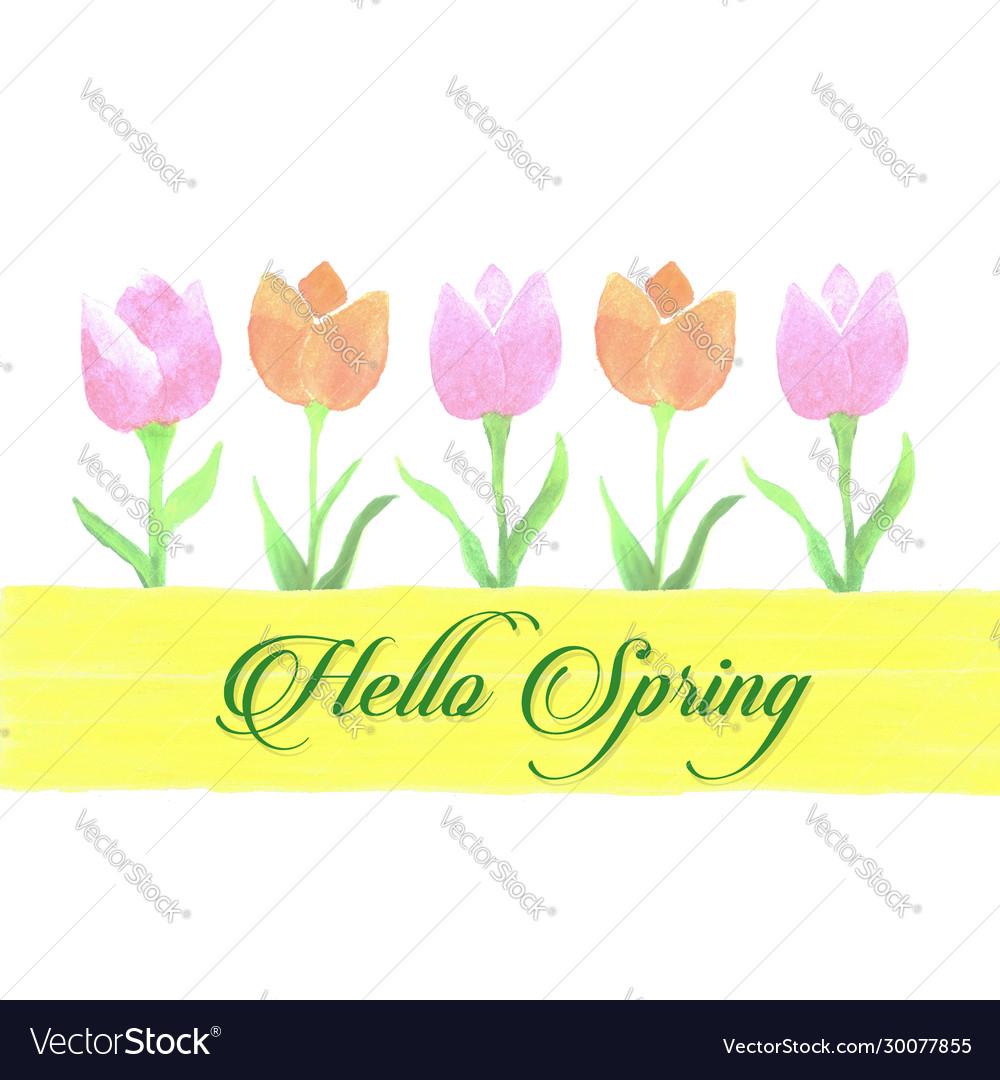 Spring Watercolor Tulip Banner For Scrapbooking Vector Image