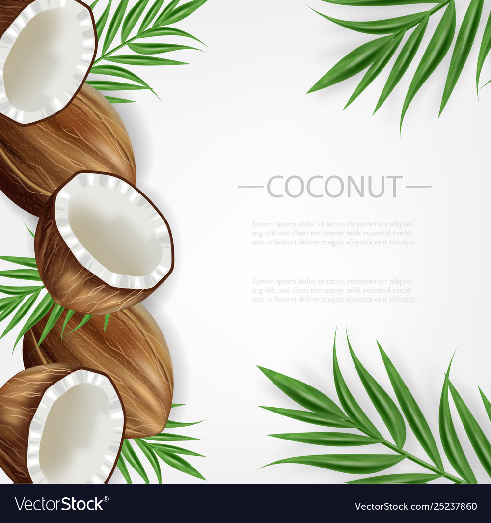 Coconut background realistic layout