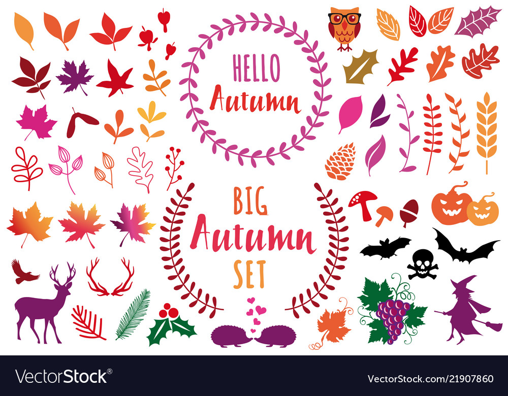 Colorful autumn leaves and design elements