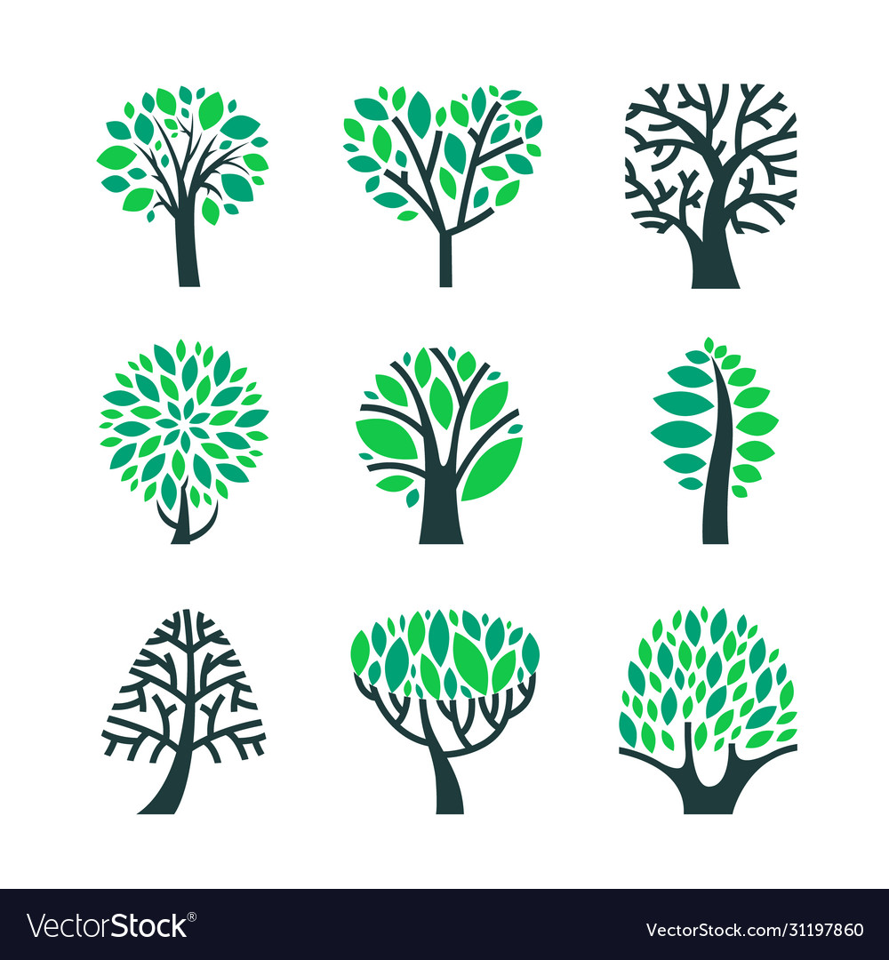 Trees with green leaves on branches set isolated