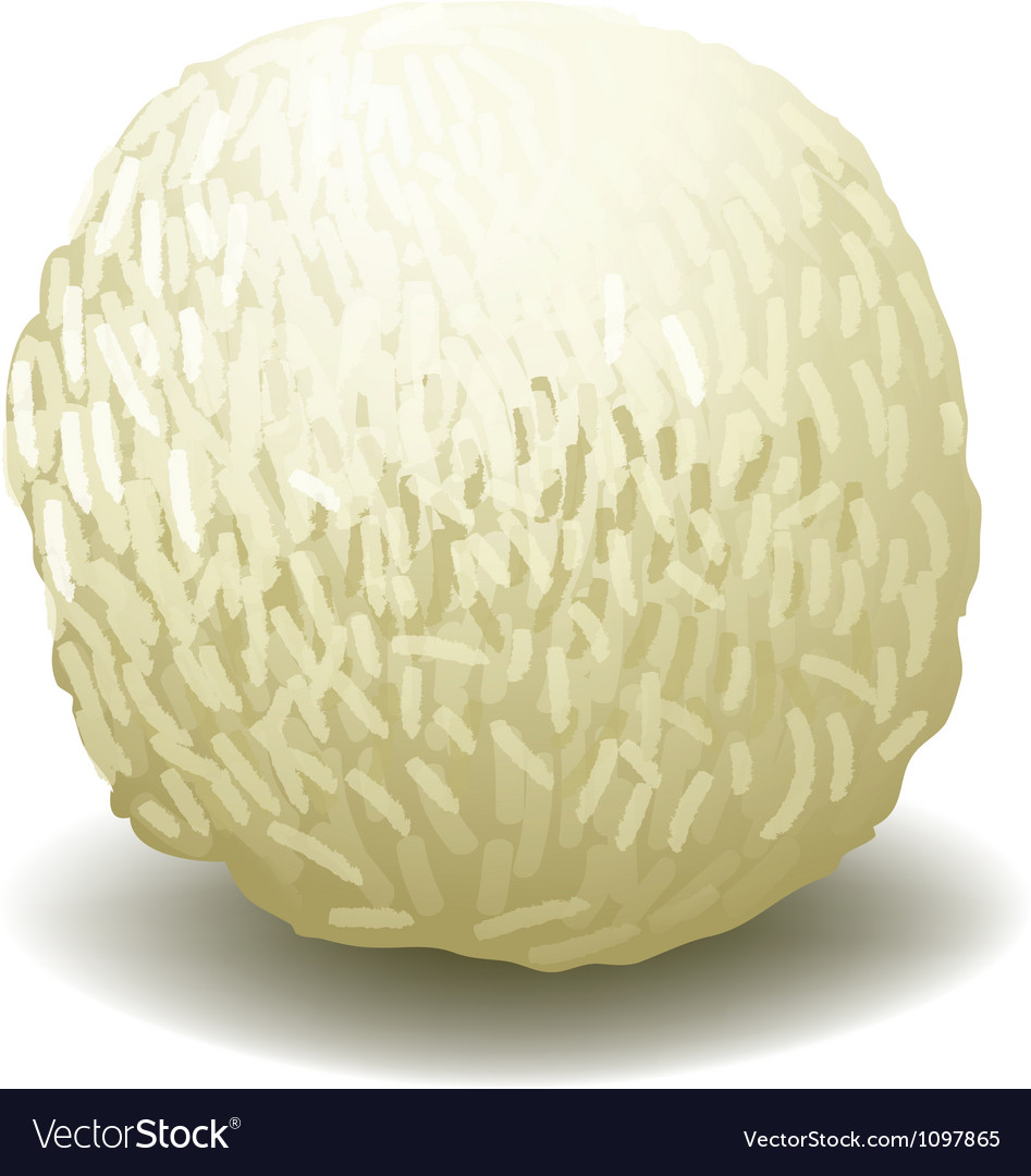 White Chocolate vector image