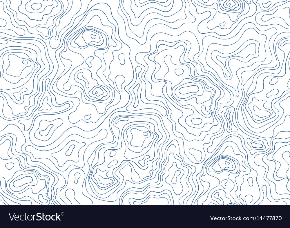 Topographic map seamless pattern monochrome vector image