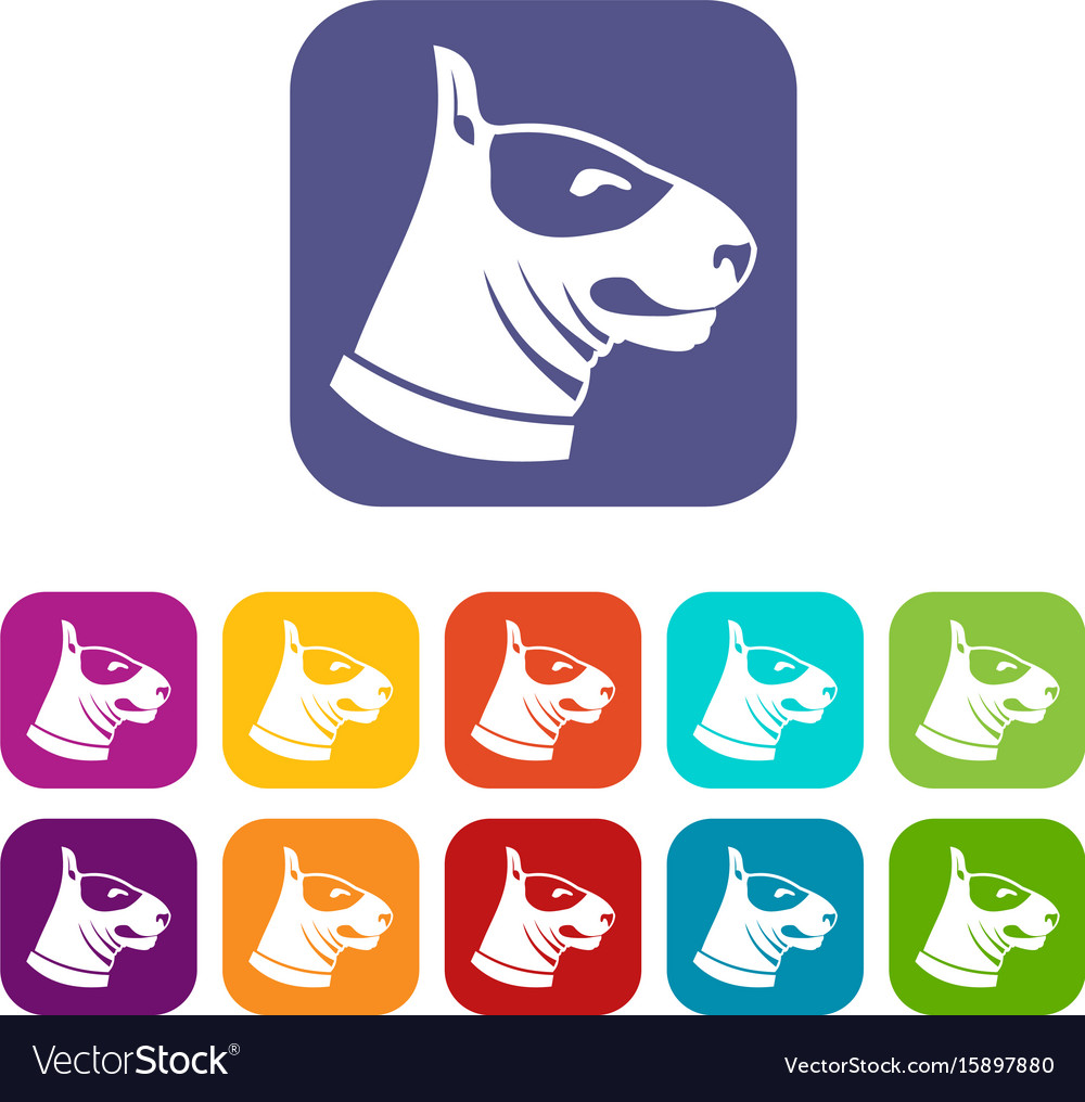 Bull terrier dog icons set