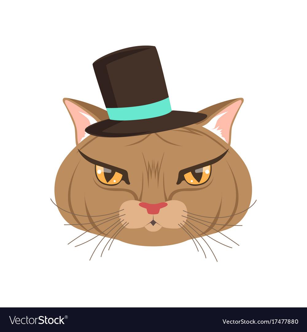 Elegant cat wearing black hat funny cartoon vector image