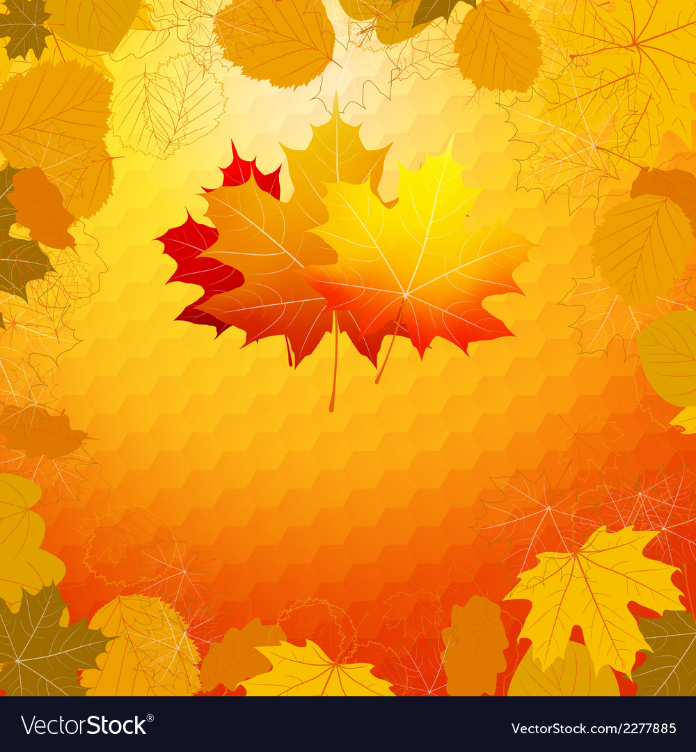 Colorful geometric card with maple plus EPS10 vector image