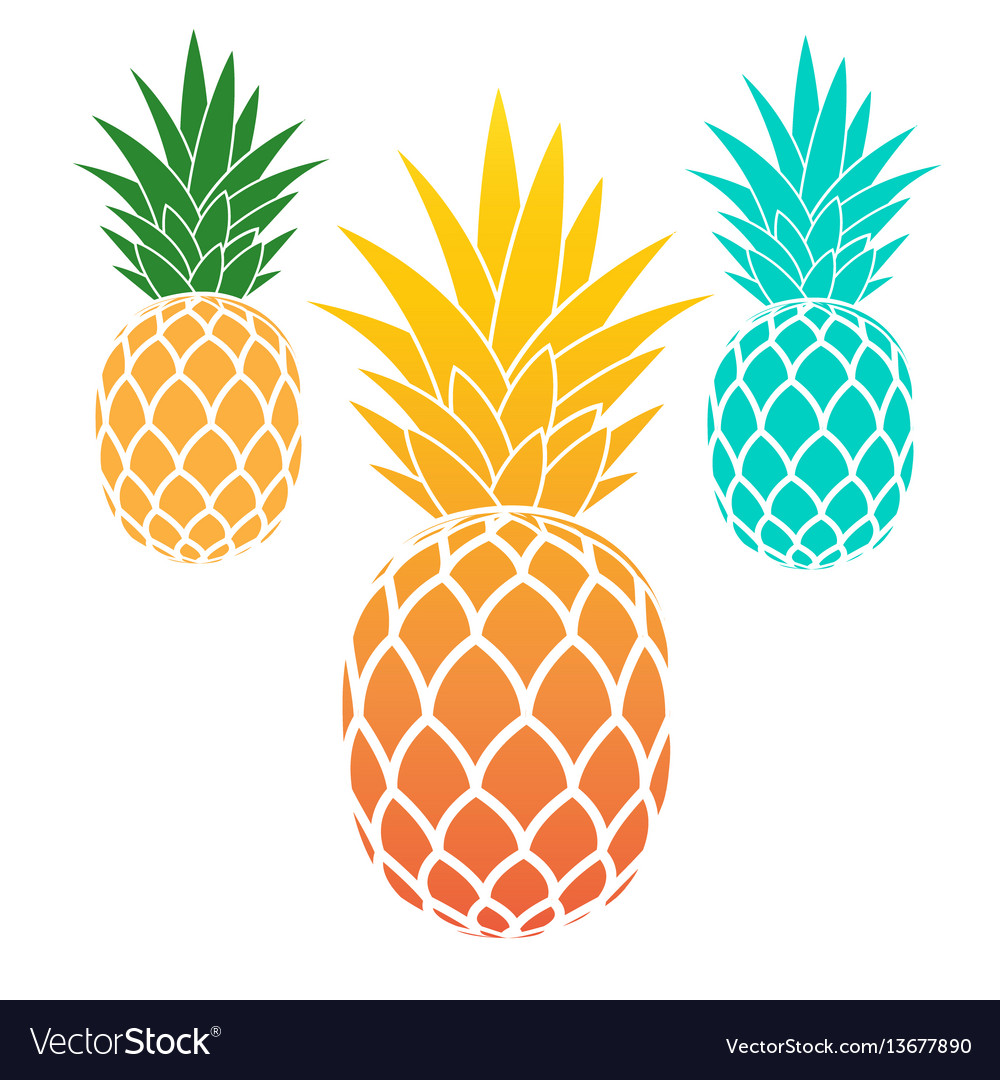Set of pineapples vector image