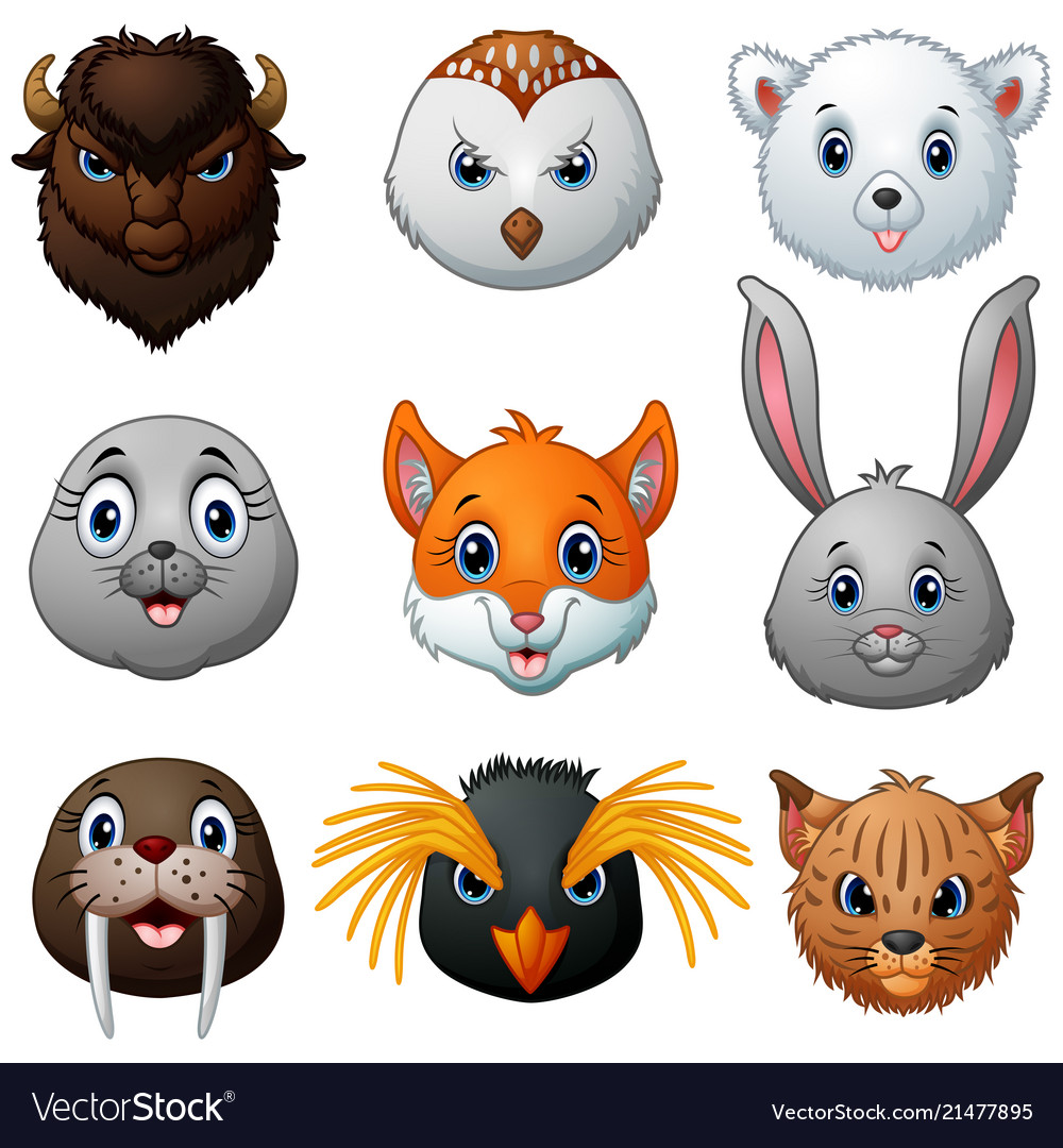 Animals head cartoon collection