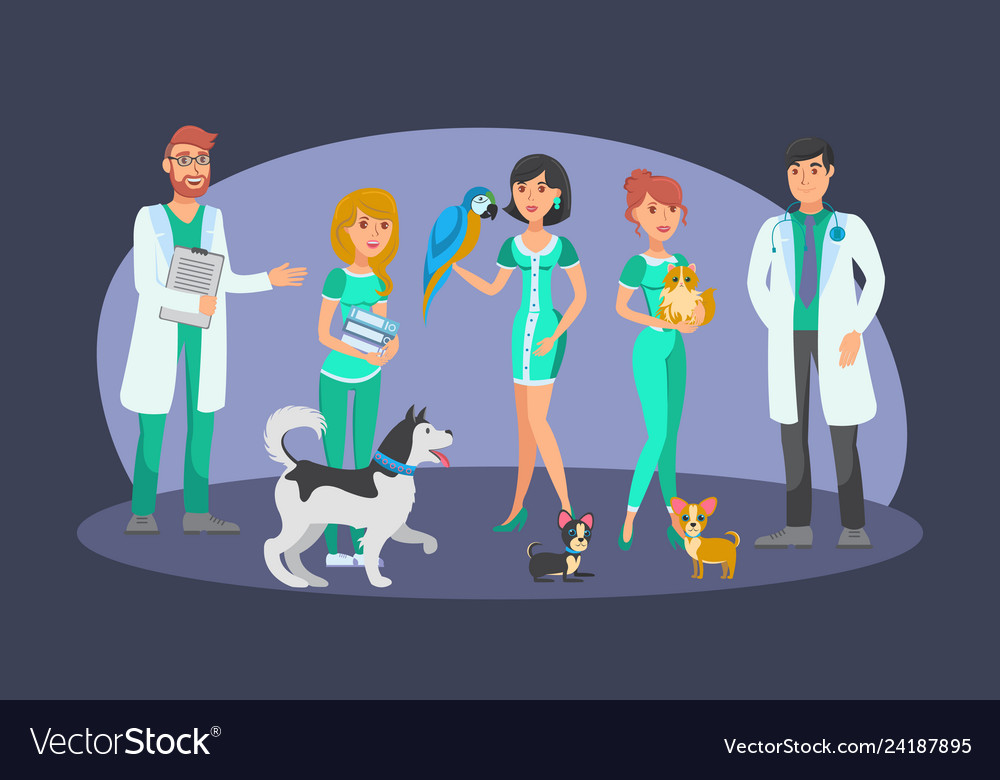 Veterinary staff flat color characters