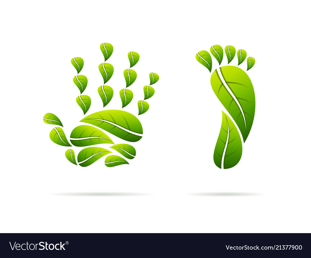 Ecological leaves concept icons hand and foot